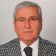 Mahmut Cin